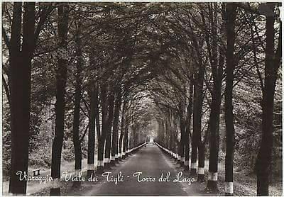 viale dei tigli torre del lago viareggio anni 50-60